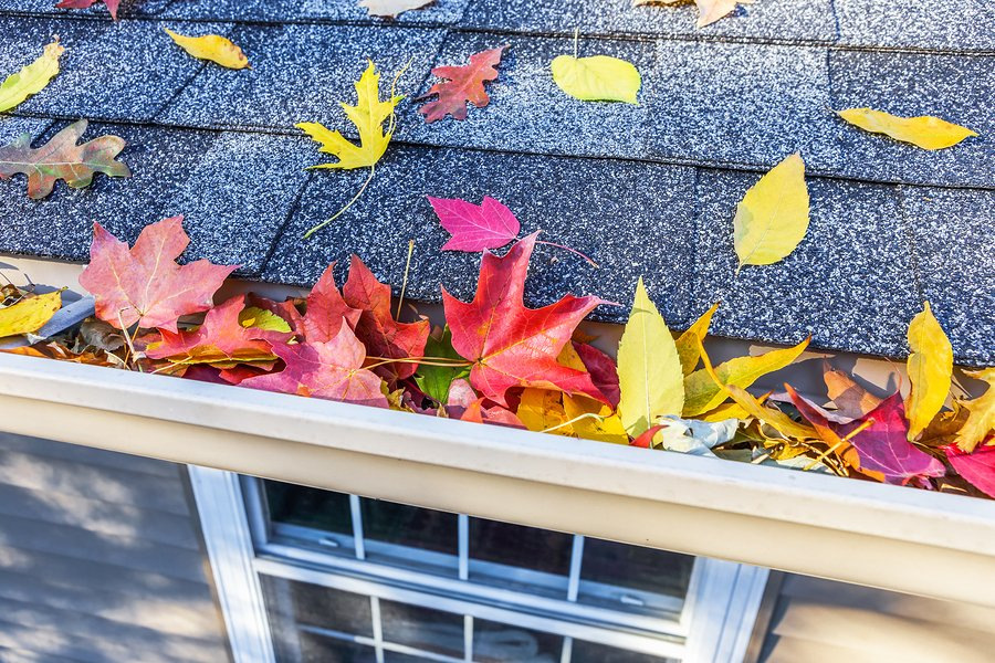 6 Tasks Every Homeowner Should Do This Fall